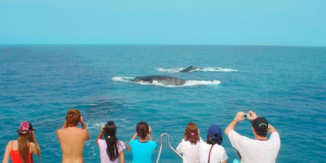 Projeto une turismo e preservação ambiental na Bahia