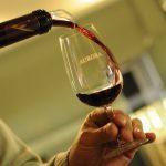 Os vinhos da Serra Gaúcha são  deliciosos!